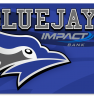 Blue Jays card design